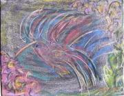 hummingbirdbk